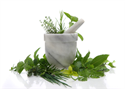 Herbal Herbs - an invigorating blend of herbal notes to create a purifying ambience